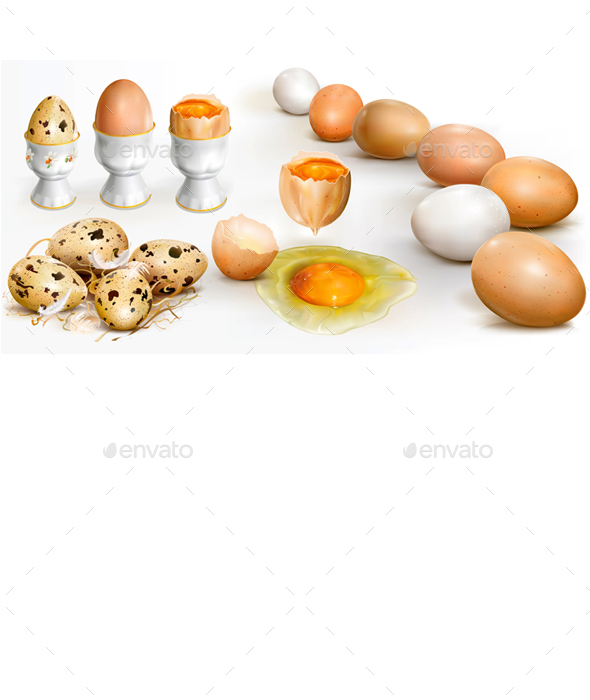 A Set of Chicken and Quail Eggs - Organic Objects Objects