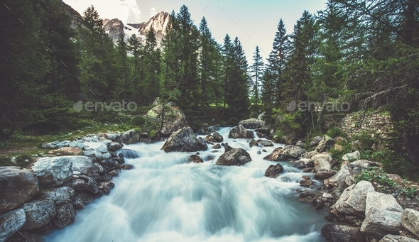 Alpine River in the Italy - Stock Photo - Images