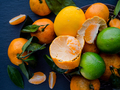 Tangerines, lemons and limes - PhotoDune Item for Sale