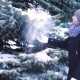 Winter Landscape,  Shooting, the Snow Slowly Falls in the Winter Park, the Girl Walks - VideoHive Item for Sale