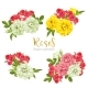 Set Collection Flowers Roses on White Background - GraphicRiver Item for Sale