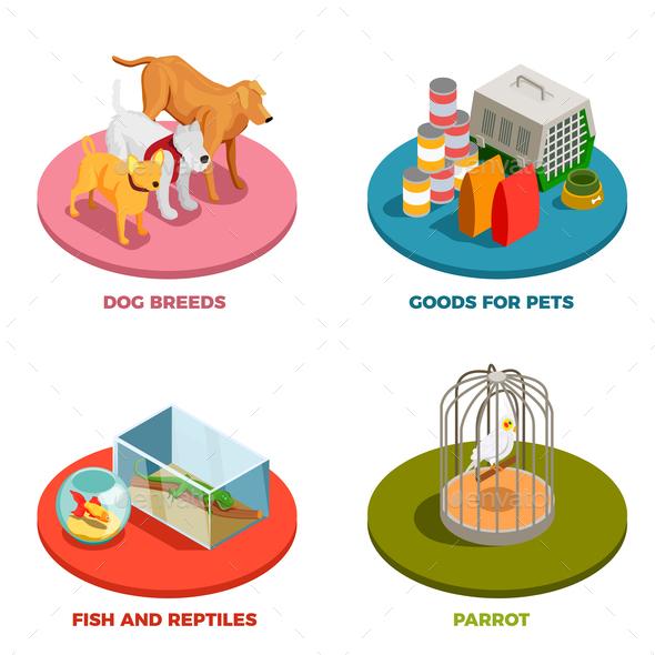 Pet Shop 2x2 Design Concept - Animals Characters