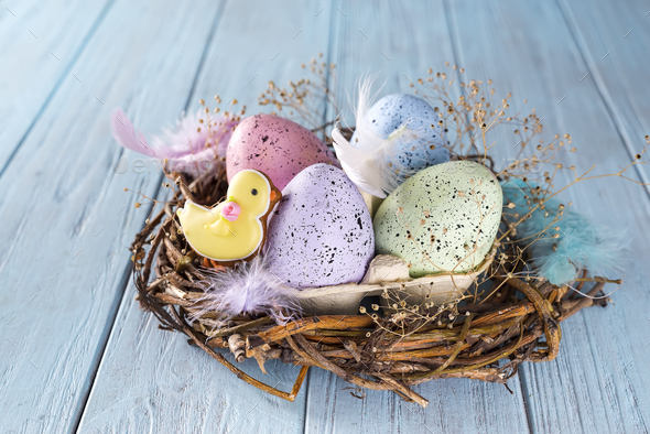 Colorful easter egg in the nest on wood background - Stock Photo - Images
