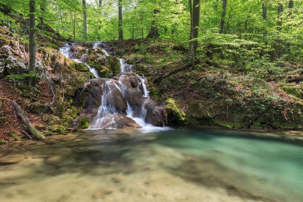 Beusnita river, Romania - Stock Photo - Images