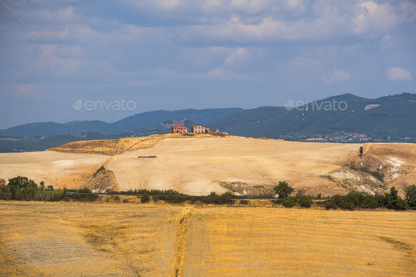 Tuscany: the road from Asciano to Siena - Stock Photo - Images