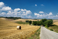 Summer landscape in the Chianti region (Tuscany) - PhotoDune Item for Sale