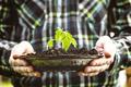 Gardener - PhotoDune Item for Sale