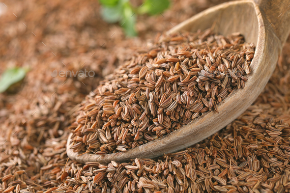 spoon of caraway seeds - Stock Photo - Images