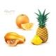 Pineapple Papaya Orange Realistic Exotic Fruit Set