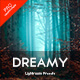 Dreamy Lightroom Presets - GraphicRiver Item for Sale