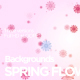 Spring Flowers Backgrounds - VideoHive Item for Sale