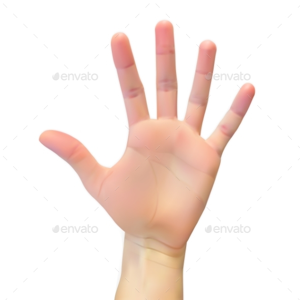 Realistic 3D Silhouette of an Open Hand on White - Miscellaneous Vectors