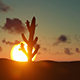 Timelapse Of Sunrise Over Desert - VideoHive Item for Sale