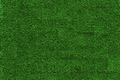 small grass leaves green texture - PhotoDune Item for Sale