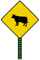 cattle crossing sign - PhotoDune Item for Sale