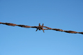 Rusty Barbed Wire - PhotoDune Item for Sale