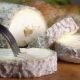 Goat Cheese with Blue-grey Mould - VideoHive Item for Sale