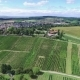 Small German Town on Vineyards - VideoHive Item for Sale