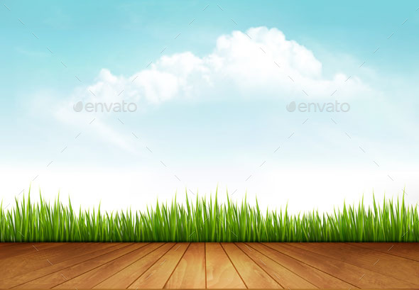 Nature Background With Green Grass And a Wooden Deck - Landscapes Nature