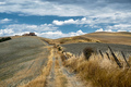 Tuscany: the road to Torre a Castello - PhotoDune Item for Sale