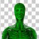 Wired Green Anatomy Walk Animation - VideoHive Item for Sale