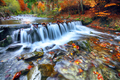 Mountain river with rapids and waterfalls at autumn time - PhotoDune Item for Sale