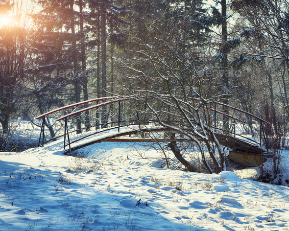 Winter frosty trees and old snowy bridge in the winter park - Stock Photo - Images