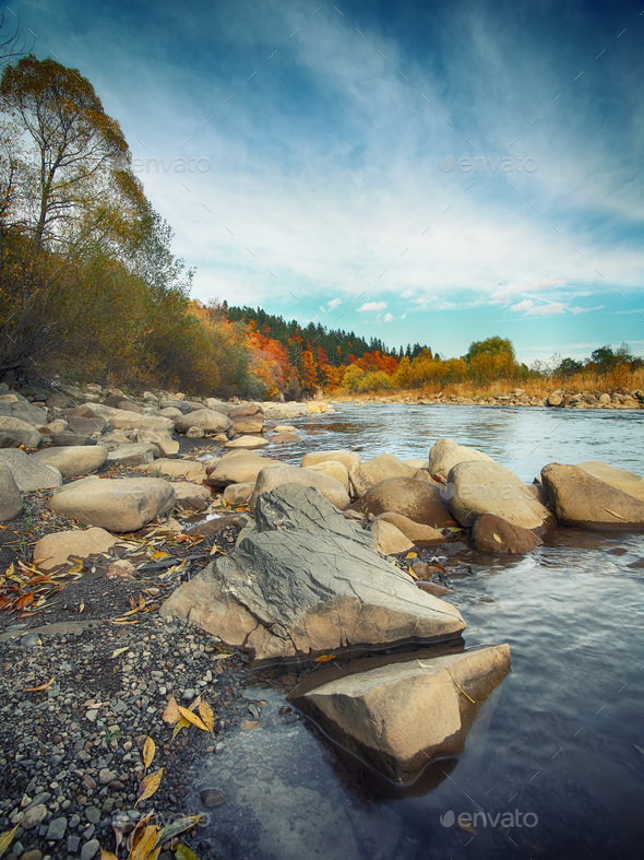 rocky shore of the river - Stock Photo - Images