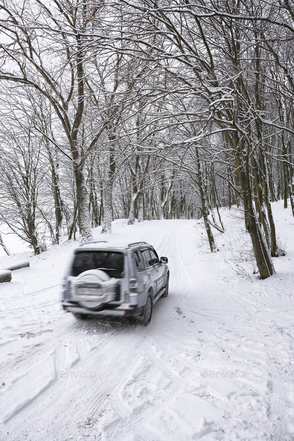 single car on a winter road in the forest - Stock Photo - Images