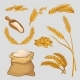 Set of Icons with Golden Wheat Ears - GraphicRiver Item for Sale