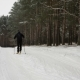 Man Skiing in the Winter Park - VideoHive Item for Sale