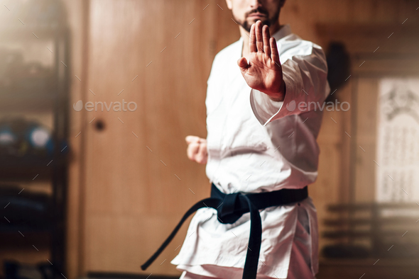 Martial arts master on fight training in gym - Stock Photo - Images