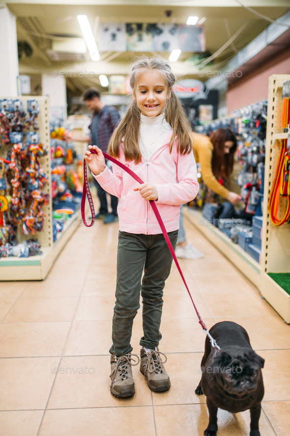 Little girl with puppy in pet shop, friendship - Stock Photo - Images