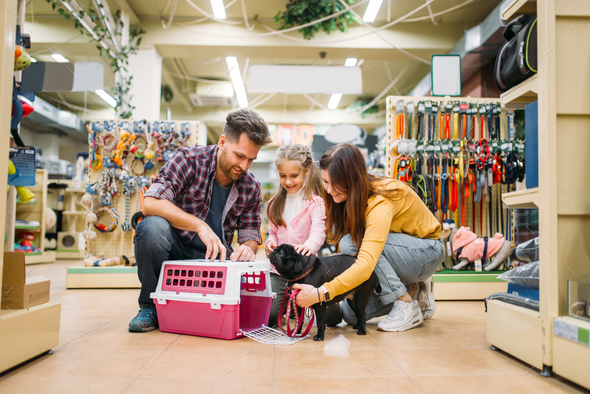 Family buying supplies for little puppy in petshop - Stock Photo - Images