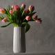 beautiful pink tulips - PhotoDune Item for Sale