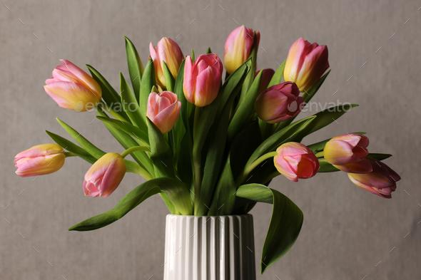 beautiful pink tulips - Stock Photo - Images