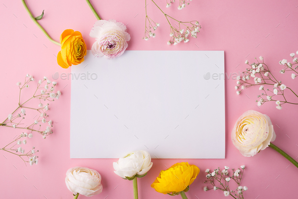 Colorful flowers on a pink background. - Stock Photo - Images