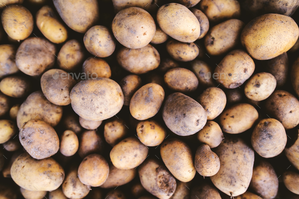 Close up of fresh potatoes. - Stock Photo - Images