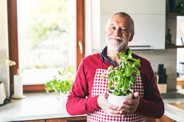 Senior man preparing food in the kitchen. - Stock Photo - Images