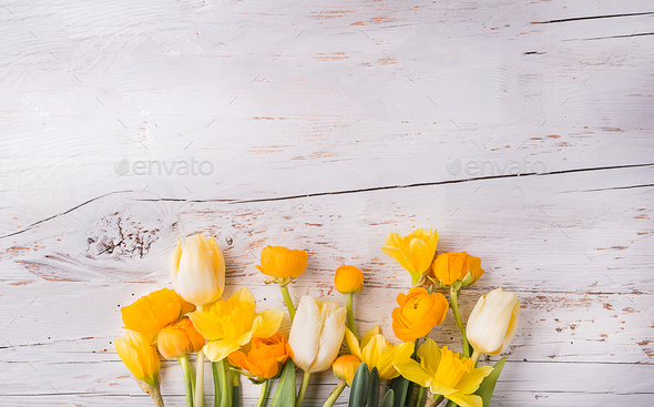 Yellow flowers on a white wooden background. - Stock Photo - Images