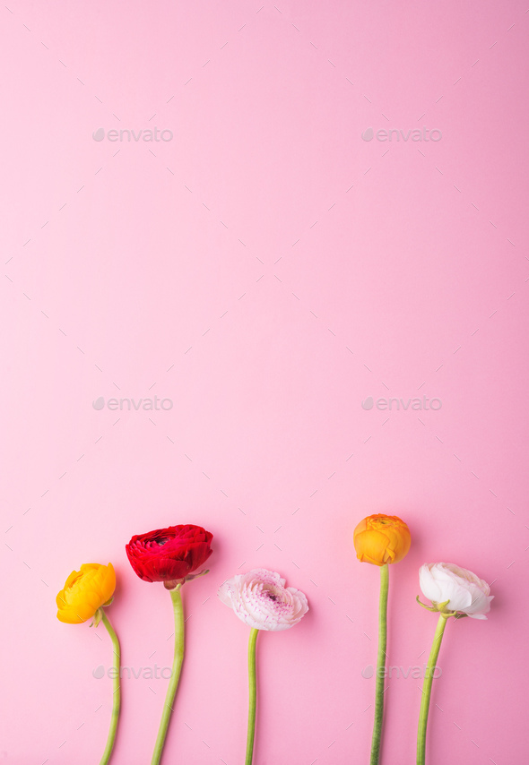 Easter and spring flat lay on a pink bacground. - Stock Photo - Images