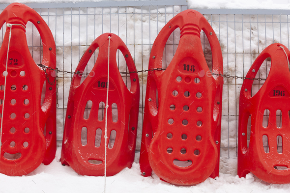Red sledges ready to rent. Winter sports. Recreation. Horizontal - Stock Photo - Images