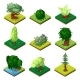 Public Park Decorative Trees Isometric 3D Set