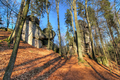Boulders at the forest path in Bohemian Paradise - PhotoDune Item for Sale