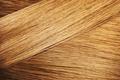 Perfect hair sample - PhotoDune Item for Sale