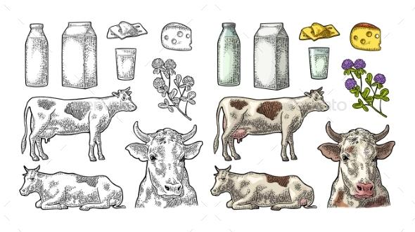 Farm Milk Set - Food Objects