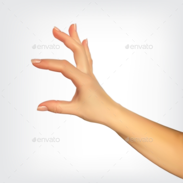 Realistic 3D Silhouette of Hand Showing the Size - Miscellaneous Vectors