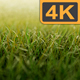 Grass 4K - VideoHive Item for Sale