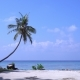 Tropical Beach with Coconut Palm Trees - VideoHive Item for Sale