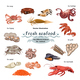 Sketch Colorful Marine Creatures Collection - GraphicRiver Item for Sale
